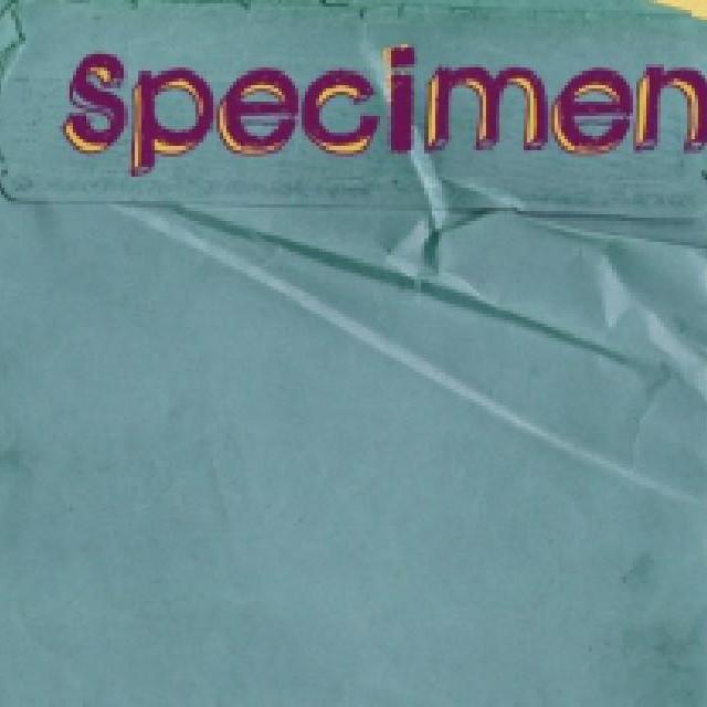 Les thématiques abordées par Specimen sont ...