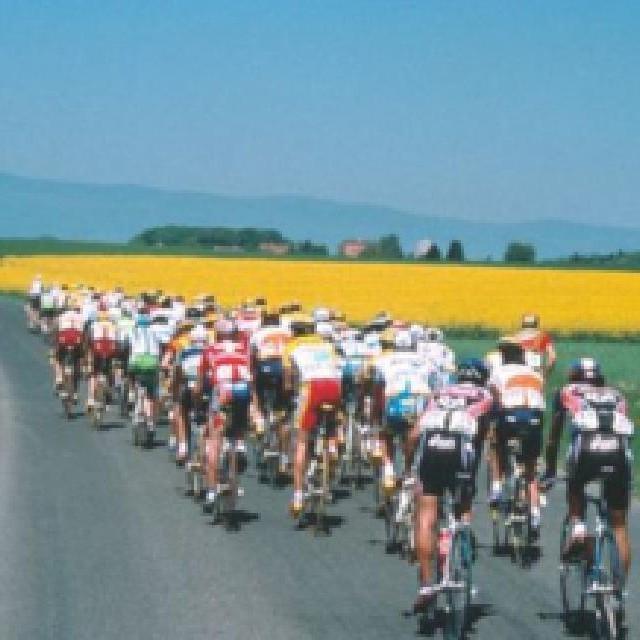 Tennis, Eurofoot, JO, Cyclisme, F1, journée spéciale… En fait-on trop avec le Sport sur les chaînes de la RTS ?